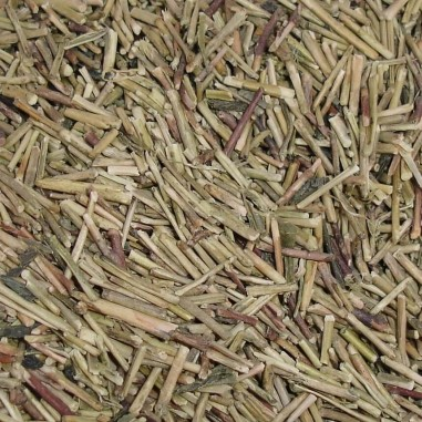Té Kukicha Verde China Bio