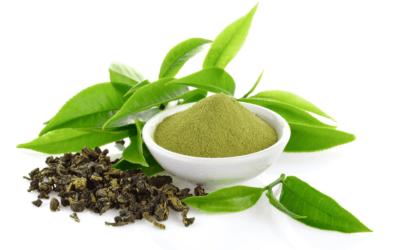 ¿Qué beneficios tiene el té verde?